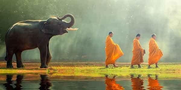 Buddhist Monks in Phuket, Thailand
